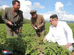 Sanktionen greifen: Nordkoreas Wirtschaft bricht ein