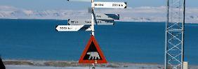 """Kreuzfahrt der """"MS Bremen"""": Eisbär attackiert Mann auf Spitzbergen"""
