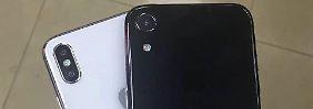 LCD- und Plus-Modell: Die neuen Riesen-iPhones zeigen sich