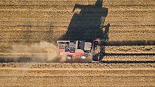 Der Bauernverband erwartet für dieses Jahr eine Getreideernte von 36 Millionen Tonnen und korrigiert die Zahl somit erneut nach unten.