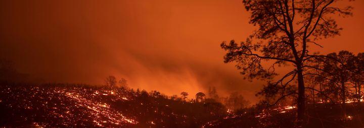 """""""Holy Fire"""" war Brandstiftung: 18 Waldbrände wüten in Kalifornien"""