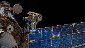 """Antenne an ISS installiert: """"Icarus"""" soll Rätsel der Tierwanderungen lüften"""