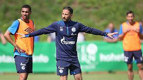 """""""Der Pokalgegner ist heiß und im Saft"""": Tedesco verbietet Schalke """"Schongang"""" gegen Schweinfurt"""