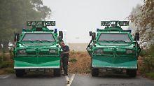 Abholzung ab Oktober: Polizei zieht Beamte aus Hambacher Forst ab