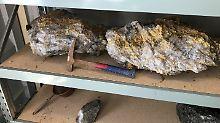Überraschung in Australien: Goldklumpen in Millionenwert entdeckt