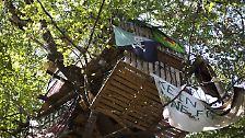 Jahrelang wurden die Bauten geduldet, nun soll die Polizei den Wald räumen.