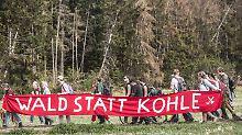 """Rodungen im Hambacher Forst: Greenpeace pocht auf """"politische Lösung"""""""