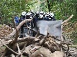 Aktivisten kritisieren Vorgehen: Polizei räumt Barrikaden im Hambacher Forst