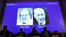 Bremsen der Immunzellen gelöst: Medizin-Nobelpreis geht an Krebsforscher