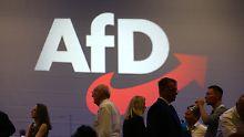 Ein Buch für Spahn, AKK und Co.: Was die AfD stärkt und was sie schwächt