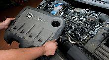 Kfz-Gewerbe unter Druck: Autohäuser leiden unter Dieselkrise