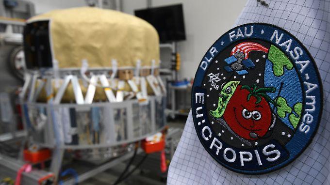 Der Forschungssatellit wird als fliegendes Gewächshaus in 600 Kilometern Höhe um die Erde kreisen.