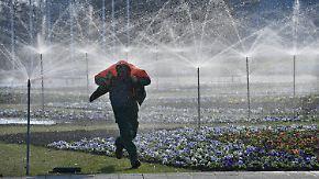 Temperaturen im Sinkflug: Freitag startet trüb