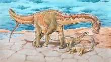 Fundsache, Nr. 1391: Unbekannte Dino-Art in Argentinien
