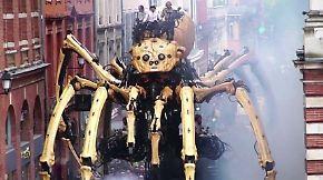 Kaum zu glauben, aber wahr: Riesige Roboterspinne krabbelt durch Toulouse