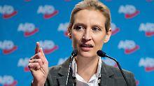 Wahlkampfhilfe aus der Schweiz: Staatsanwaltschaft prüft AfD-Spende