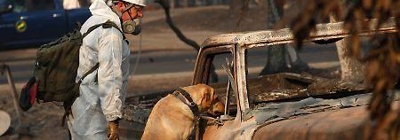 Brandopfer in Kalifornien: Vermisstenzahl steigt auf über 1000