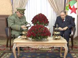 Präsident soll amtsunfähig sein: Algerische Armee will Bouteflika absetzen