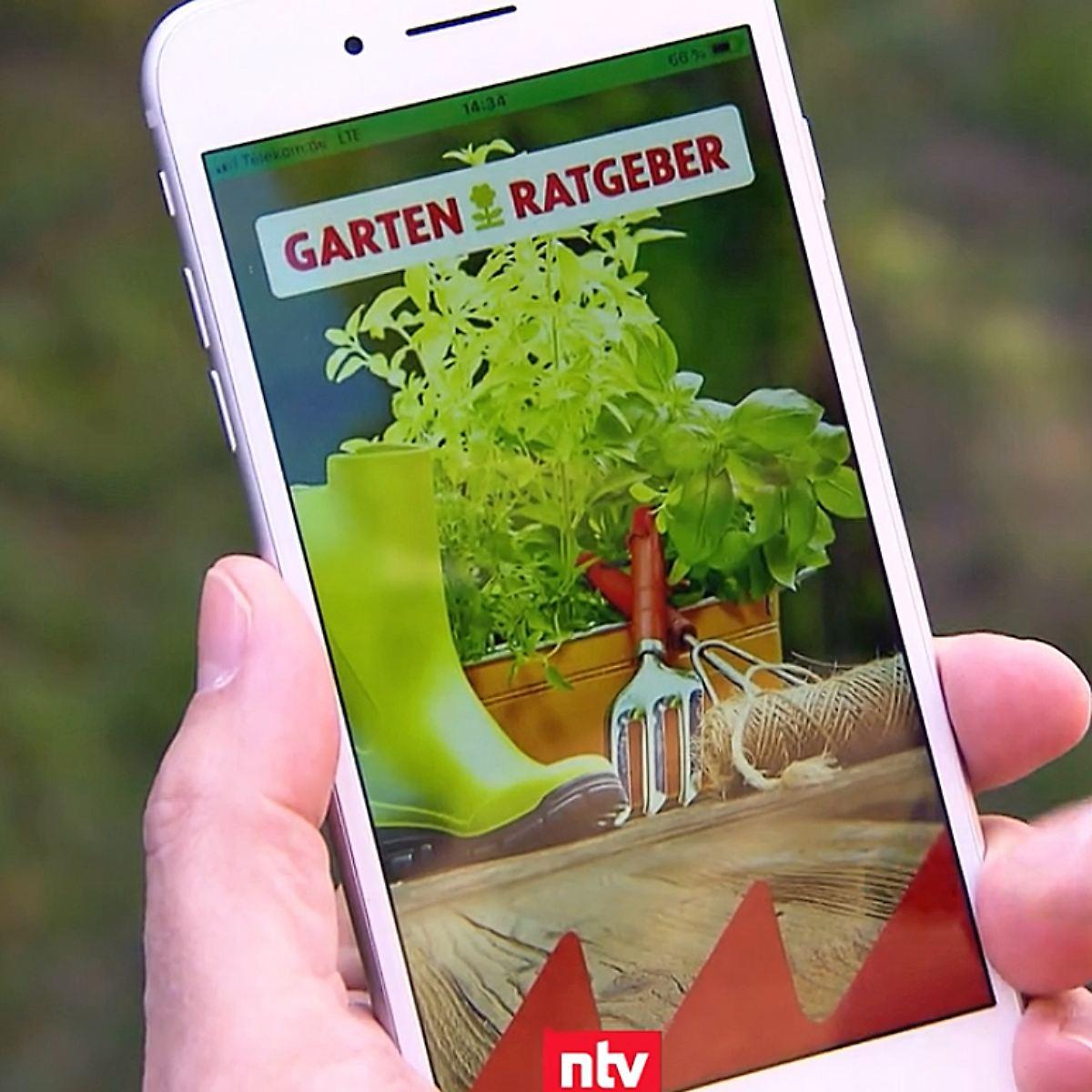 N Tv Ratgeber Empfehlenswerte Apps Fur Den Garten N Tv De
