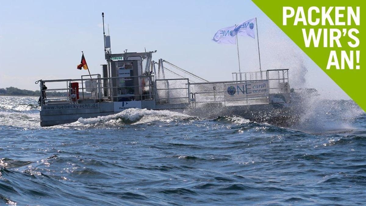"""Deutsche """"Seekühe"""" sollen Meere retten"""