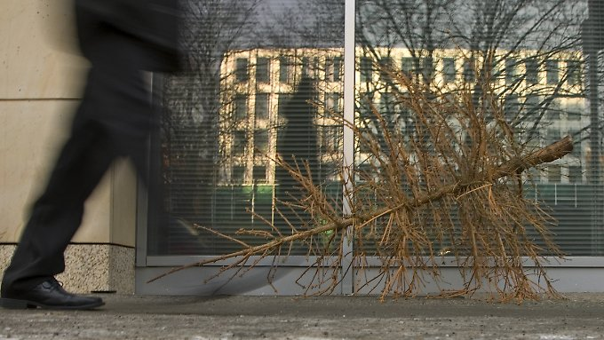 Die meisten gekauften Bäume werfen schon nach kurzer Zeit ihre Nadeln ab.