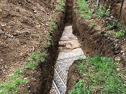Relikt aus der Römerzeit: Prachtvolles Mosaik unter Weinberg entdeckt