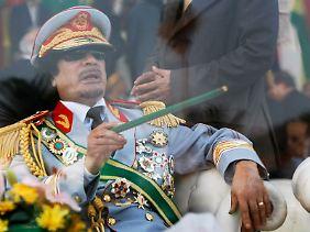 Gaddafi sitzt im Glashaus. Wenn er geht, fällt wahrscheinlich auch die gesamte Familien-Dynastie zusammen.