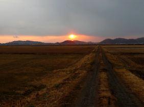 Weite Landstriche im Nordosten Japans hätten nach Meinung von Strahlenexperten bereits evakuiert werden müssen.