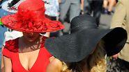 Pferde? Auch Pferde ...: Hysterie in Liverpool: Ein Sieger, zwei tote Pferde