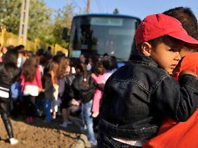 300 Roma reisten in sechs Bussen des Roten Kreuzes aus Gyöngyöspata ab.