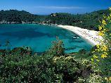 Blick auf die Bucht von Fetovaia: Gerade vor der Hochsaison ist Elba ein beliebtes Ziel für Wanderer.