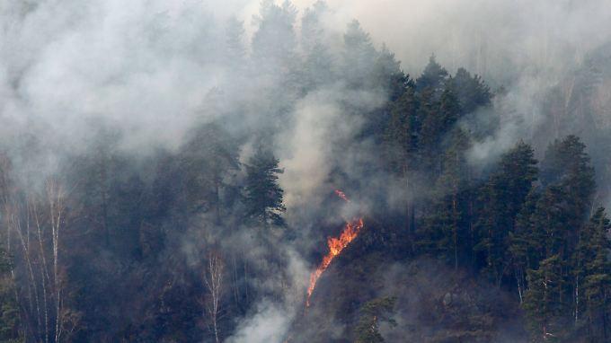Nahe der sibirischen Stadt Krasnojarsk tobten schon Mitte April 2011 schwere Waldbrände.