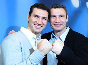 Nach dem Body-Mass-Index sind die Klitschko-Brüder übergewichtig.