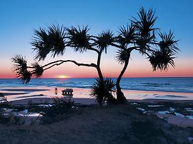 Der Strand als Highway: Fraser Island gehört zu einem Nationalpark - mit Allradfahrzeugen ans Wasser zu fahren, ist aber kein Problem.