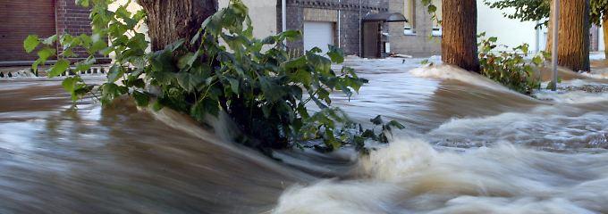 Wittenberg im August 2002: Die Elbe fließt durch den Stadtteil Pratau.
