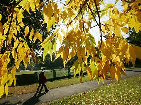 Der kalendarische Herbstbeginn ist erst gut drei Wochen nach dem meteorologischen.