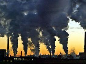 Kein Land ist ein echter Vorreiter im Klimaschutz.