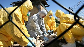 USA wollen Studie aus Angst zensieren: Forscher entwickeln Supervirus
