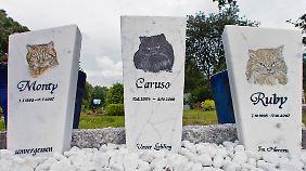 Tiere werden oft als Familienmitglieder gesehen. Das zeigt sich auch in den Begräbnisstätten.