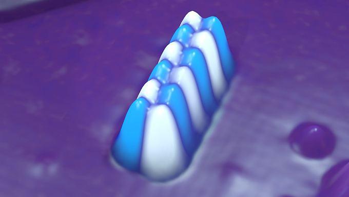 Die Aufnahme mit einem Rastertunnelmikroskop zeigt die Doppelkette aus insgesamt zwölf Eisenatomen. Diese speichern ein Bit.