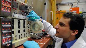 Die Apparatur zur Synthetisierung des Malariawirkstoffs Artemisinin.