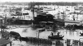 50 Jahre Stumflut: Als Hamburg im Wasser versank