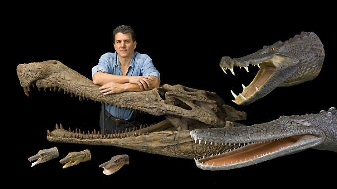"Der Paläontologe Paul Sereno mit ""SuperCroc"" und seinen in der Sahara entdeckten Krokodilen ""BoarCroc"" (rechts oben), ""PancakeCroc"" (rechts unten) sowie (unten) ""RatCroc"", ""DogCroc"" and ""DuckCroc"""