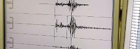 Details, die für die exakte Vorhersage eines Erdbebens nötig wären, bleiben offen.
