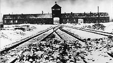 Holocaust: Der Mord an den europäischen Juden