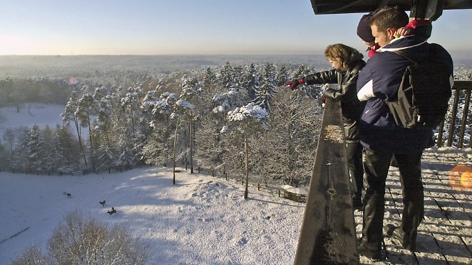 Vom Aussichtsturm im Wildpark Schwarze Berge fällt der Blick über die Landschaft südlich von Hamburg.