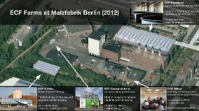 ECF plant Großes: eine Stadtfarm auf 1000 Quadratmetern und eine Dachfarm in siebenfacher Größe.