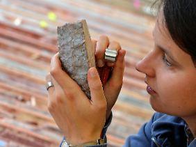 Bis zu 3,7 Kilo je Tonne Gestein: Für die Deutsche Rohstoff AG geht es um einen Marktwert von 3,3 Mrd. Euro - zu derzeitigen Marktpreisen.