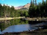 Ein See im Yosemite Valley im Yosemite Nationalpark in Kalifornien: Zwei Menschen sind im Nationalpark an Hantaviren gestorben.