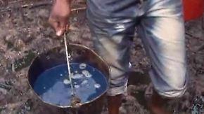 Nigerdelta völlig verseucht: Menschen leiden unter Ölpest